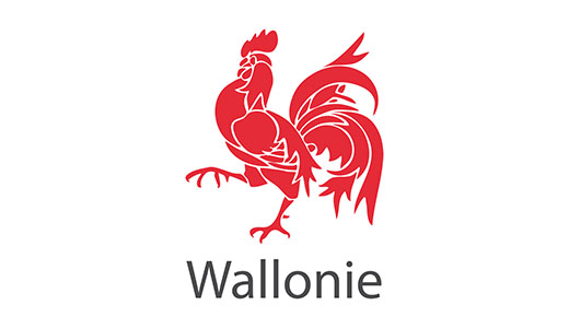 http://www.wallonie.be/
